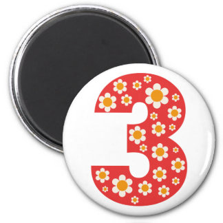 Delightful Daisies Number 3 Birthday Magnet