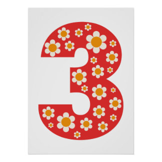 Delightful Daisies Number 3 Poster
