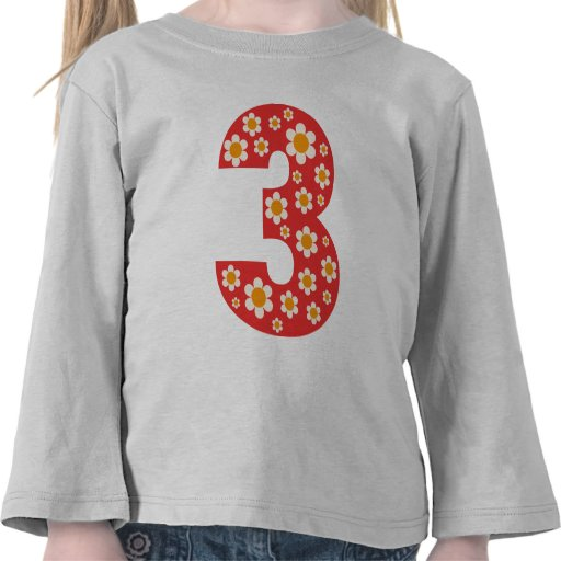 Delightful Daisies Number 3 T Shirt