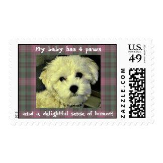 delightful dog postage stamps