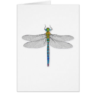 Delightful Dragonfly Card