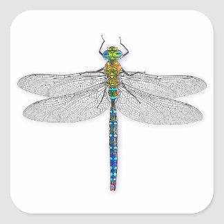 Delightful Dragonfly Square Sticker