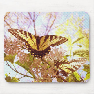 Delightful Duo Mouse Pads