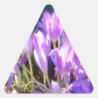 Delightful Triangle Sticker