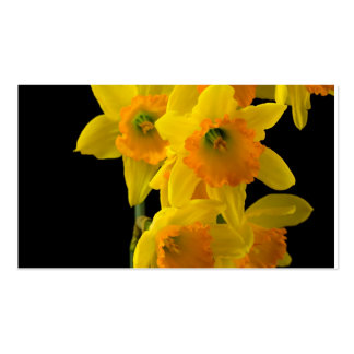 Delightful Yellow and Orange Daffodils Business Cards