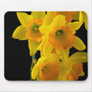 Delightful Yellow and Orange Daffodils Mouse Pad