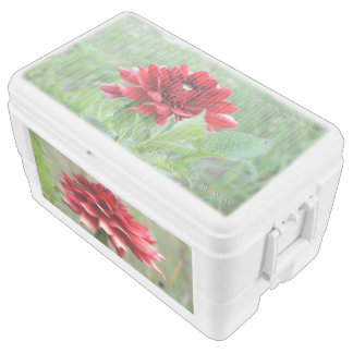 Delilah Flowers, 48 Quart Duo Deco Cooler
