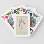 Delphinium ajacis, c.1568 bicycle playing cards
