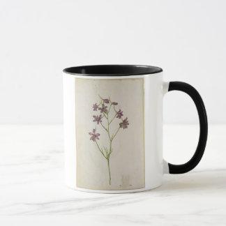 Delphinium ajacis, c.1568 mug