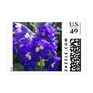 Delphinium Flower Close Stamp