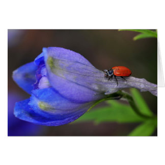Delphinium Greeting Card