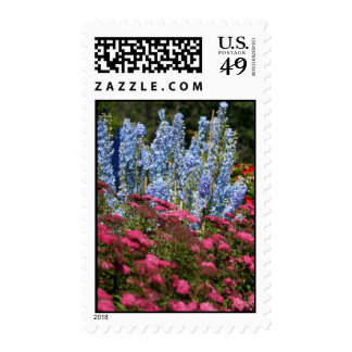Delphinium Row, S Cyr Stamp