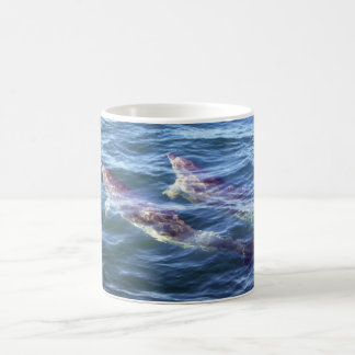 Delphinus delphis coffee mug