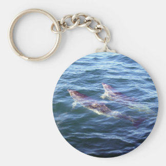 Delphinus delphis basic round button keychain