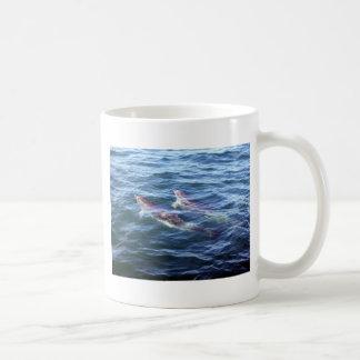 Delphinus delphis classic white coffee mug