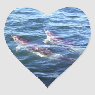Delphinus delphis heart sticker