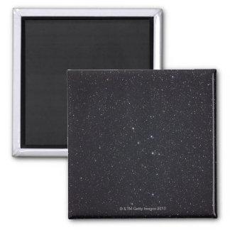 Delphinus 2 Inch Square Magnet