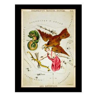 Delphinus, Sagitta, Aquila, y Antinous Tarjeta Postal