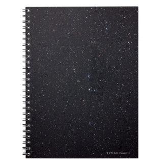 Delphinus Spiral Notebook