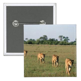 Delta de Okavango, Botswana 4 Pin Cuadrada 5 Cm
