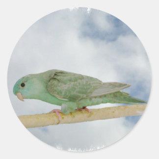Delute turqoise linnie round sticker