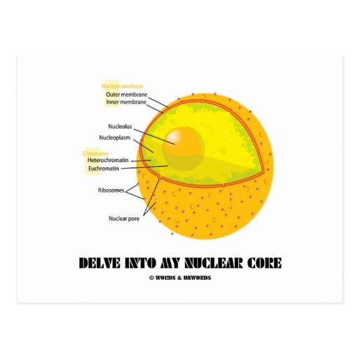 Delve Into My Nuclear Core (Cell Nucleus Attitude) Postcard