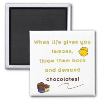 Demand Chocolate Refrigerator Magnets