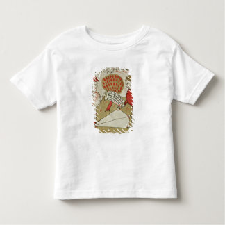 Demarcation of land, from 'Traite d'Arpentage' Toddler T-shirt
