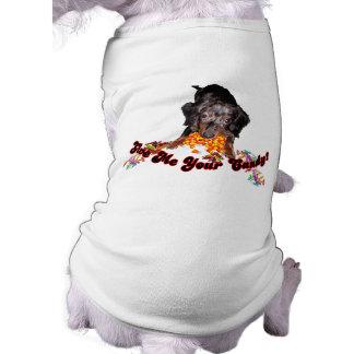 Déme su Dachshund del caramelo con el caramelo Camisa De Perro