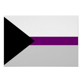Demisexuality flag Poster