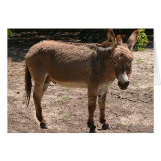 Democratic Donkey Card