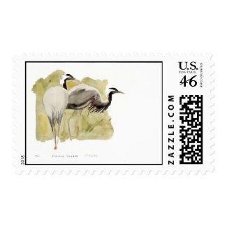 Demoiselle Cranes stamp