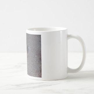 Demon Squirrel Basic White Mug