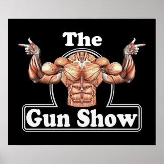 Demostración de arma póster