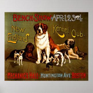 Demostración de banco. Club de la perrera de Nueva Póster