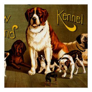 Demostración de banco. Club de la perrera de Nueva Perfect Poster