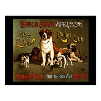 Demostración de banco del club de la perrera de Nu Tarjetas Postales