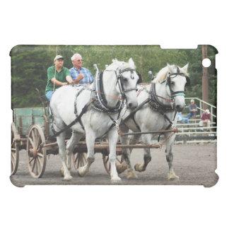 demostración del caballo/de la mula de proyecto de