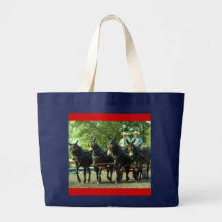 demostración del caballo de proyecto del va del cu bolsa