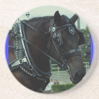 demostración del caballo de proyecto del va del cu posavasos personalizados