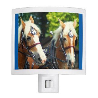 demostración del caballo de proyecto del va del lámpara de noche