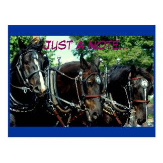 demostración del caballo de proyecto del va del postales