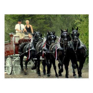 demostración del caballo de proyecto del va del tarjeta postal