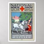 Demostración nacional del caballo (US00272) Impresiones
