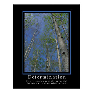 Demotivational Posters ... Determination at Zazzle