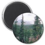 Denali - Alaska Imán Redondo 5 Cm