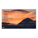Denali at Midnight Profile Card Business Card