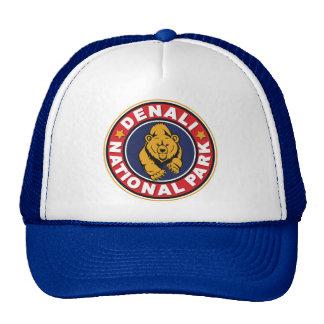 Denali Circle Logo Trucker Hat