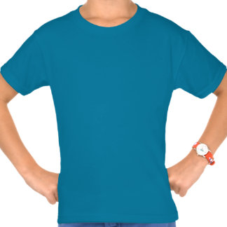 Denali (el monte McKinley) Camiseta