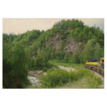 Denali Express Alaska Train Vacation Photography Wood Poster